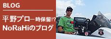 BLOG 平野プロ
